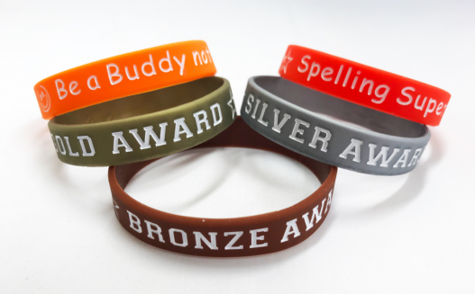 Customised Wristbands for Schools and Charities