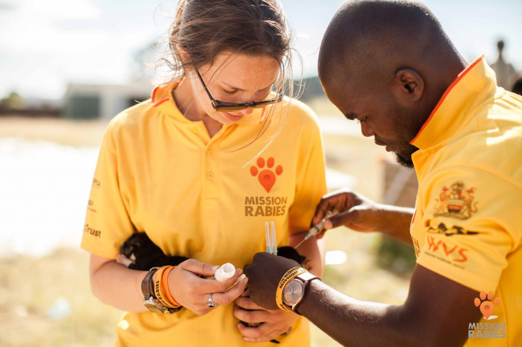Case Study: Mission Rabies